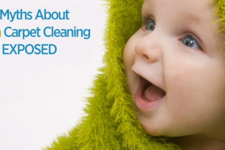 6 Myths About Green Carpet Cleaning Seattle Pureclean