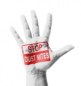 StopDustMites--PureClean--Carpet Cleaning Seattle