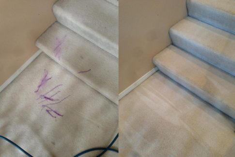 carpet cleaning bothell before & after photo